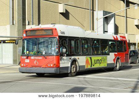 OTTAWA, CANADA - OCT. 30, 2014: Ottawa OC Transpo bus on Albert Street in downtown Ottawa, Canada.