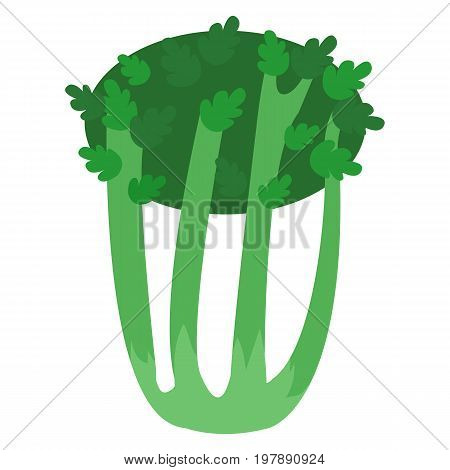 Celery fresh vegetable icon, vector illustration flat style design isolated on white. Colorful graphics