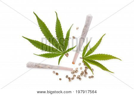 Cannabis joints and seeds with Marijuana leaves isolated on white background from above. Medical marijuana natural remedy.