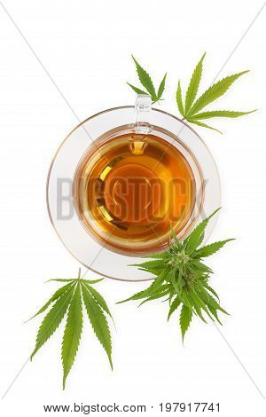 Cannabis herbal tea with cannabis leaves isolated on white background from above. Natural remedy medical marijuana.