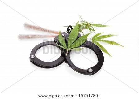 Marijuana joints buds and leafs and handcuffs isolated on white background. Dangerous marijuana drug.