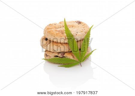 Chocolate cookies with marijuana leaf isolated on white background. Space cookies.