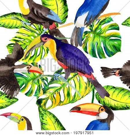 Sky bird toucan pattern in a wildlife by watercolor style. Wild freedom, bird with a flying wings. Aquarelle bird for background, texture, pattern, frame, border or tattoo.
