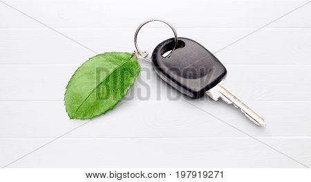 Green key leaf car shiny concepts nature