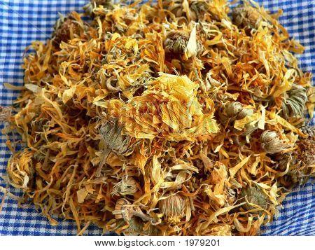 Dried Herb - Calendula
