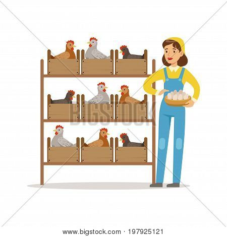 Farmer woman caring for chickens, poultry breeding vector Illustration on a white background