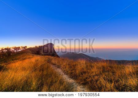 Beautiful Golden meadow at Mon-jong mountain in sunse with traveler on top ,Unseen of travel place in Chiang Mai, Thailand