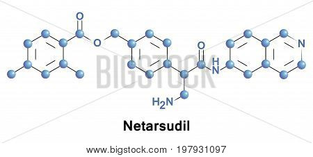 Netarsudil ophthalmic solution is a combination Rho Kinase and norepinephrine transporter inhibitor in development for the treatment of glaucoma or ocular hypertension.