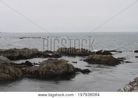 This is an image of volcanic rocks taken at Asilomar State Beach on a overcast August day at low tide.