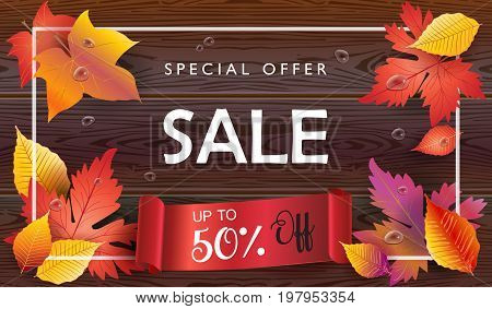 Autumn Sales banner, Sale Vector illustration. Fall sales season poster with realistic drawing maple leaves on wood texture, water drops. Thanksgiving Holiday decoration. Maple tree leaves, lettering, brown wooden texture, red ribbon.
