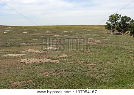 Prairie Dog Town on the Plains in Theodore Roosevelt National Park in North Dakota