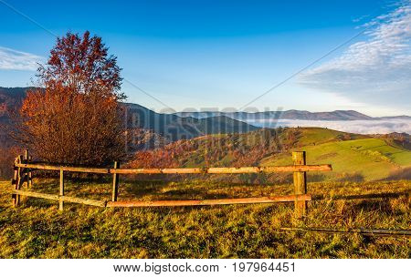 Countryside Area At Foggy Morning In Autumn