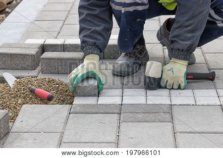 Construction Worker Setting Sidewalk Pavement