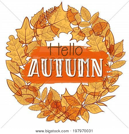 Background with colorful transparent skeleton autumn leaves hello autumn. Vector