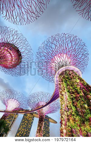 Gardens By The Bay And The Marina Bay Sands Hotel