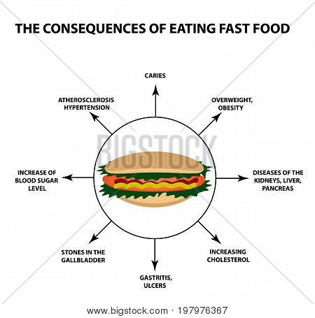 The harmful effect of fast food on the human body. Infographics. Vector illustration on isolated background.