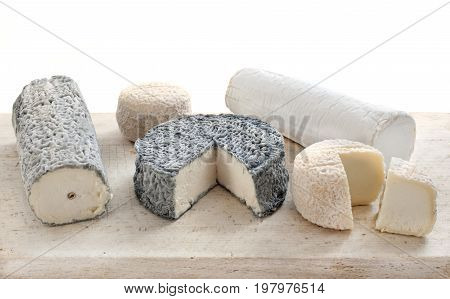 goat's cheese in front of white background