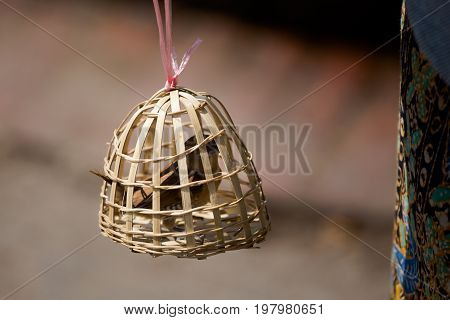 Bird Slave In Bamboo Cage
