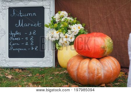 Pumpkins and flowers in autumn market. Autumnal decoration concept.