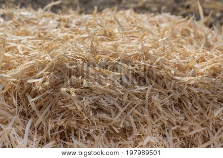 A pile of wood shavings with morning dew