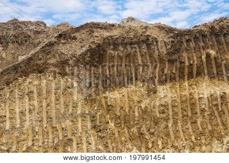 Dirt Texture Background 2