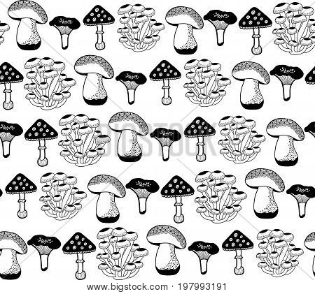 Seamless pattern with autumn mushrooms for coloring. Black and white illustration of plants. Endless creative background.