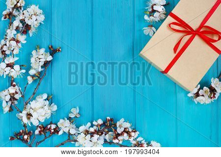 Apricot Blossom Branches And Giftbox On Bright Turquoise Backgro