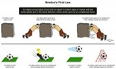 Newtona??s First Law of Motion infographic diagram with examples of stone and football at rest and when unbalanced force takes place for physics science education poster