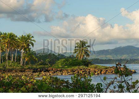 Caribbean Tropical Landscape. Samana Region, Dominican Republic. Beautiful Tropical Landscape With D
