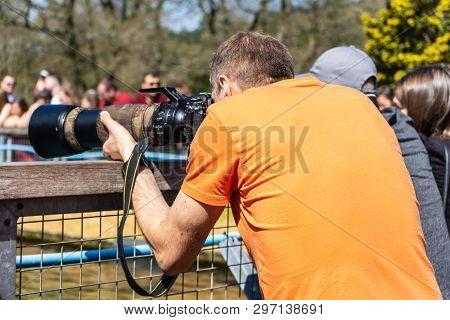 Photographer Taking Photos At Woburn Safari Park.