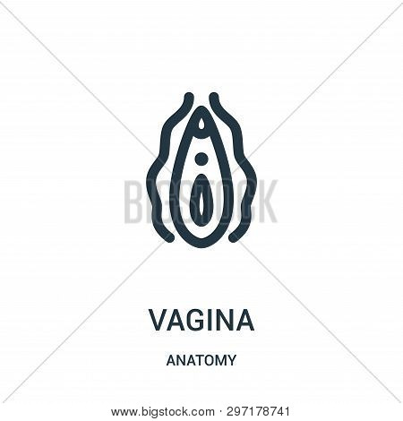 Vagina Icon Isolated On White Background From Anatomy Collection. Vagina Icon Trendy And Modern Vagi