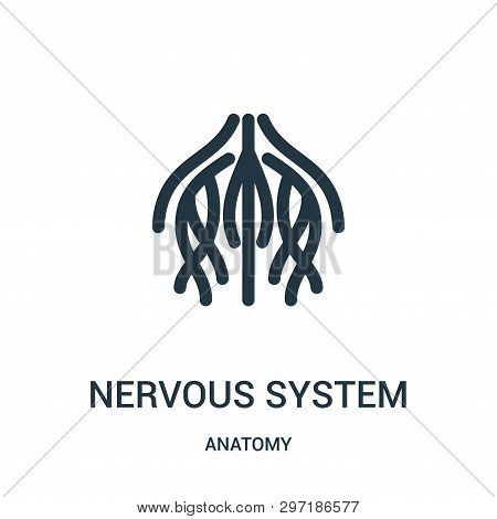 Nervous System Icon Isolated On White Background From Anatomy Collection. Nervous System Icon Trendy