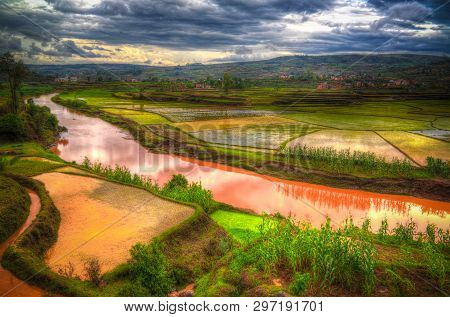 Landscape With The Rice Fields And Onive River At Antanifotsy In Madagascar