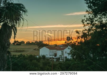 Countryside Landscape With Leafy Palm Tree, Fields And Cottage At Sunset Dusk, On A Farmstead Near E