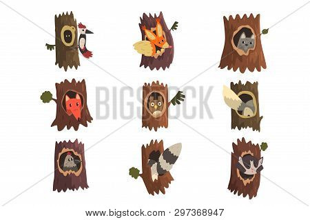 Cute Animals And Birds Sitting In Hollow Of Tree Set, Hollowed Out Old Tree And Fox, Owl, Wolf, Racc