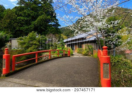 Casual spring scenery in Japan, cherry blooming over a red traditional bridge.