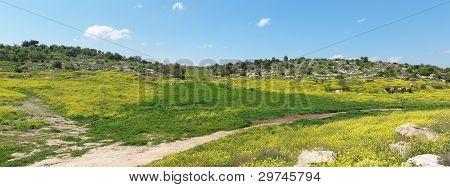mediterranen Hügel Landschaft im Frühjahr