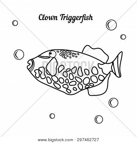 Coloring Book Tropical Fish Clown Triggerfish - Balistoides Conspicillum Whith Bubbless. Cartoon Mar