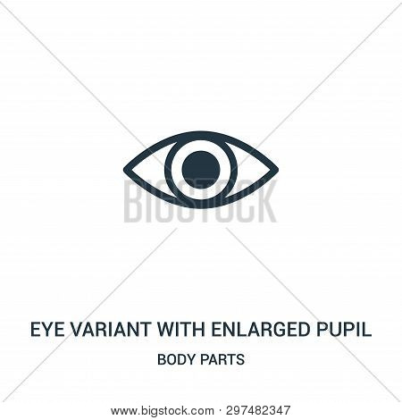 Eye Variant With Enlarged Pupil Icon Isolated On White Background From Body Parts Collection. Eye Va