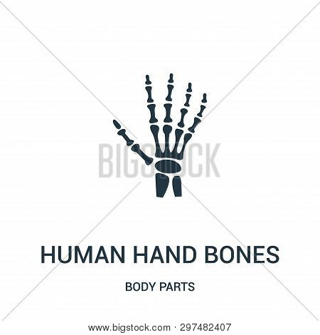 Human Hand Bones Icon Isolated On White Background From Body Parts Collection. Human Hand Bones Icon