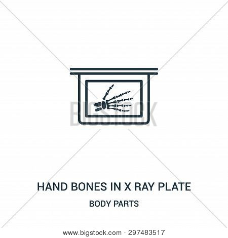 Hand Bones In X Ray Plate Icon Isolated On White Background From Body Parts Collection. Hand Bones I