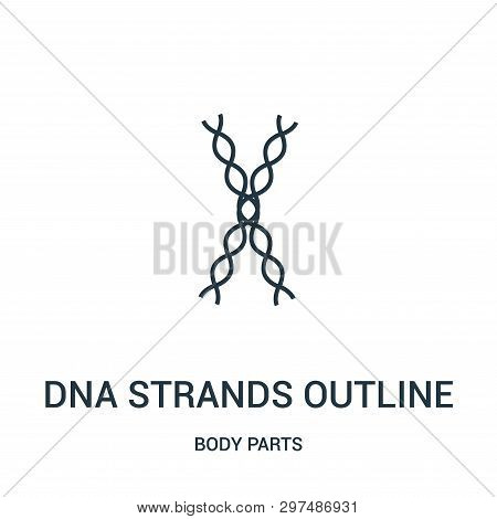 Dna Strands Outline Icon Isolated On White Background From Body Parts Collection. Dna Strands Outlin