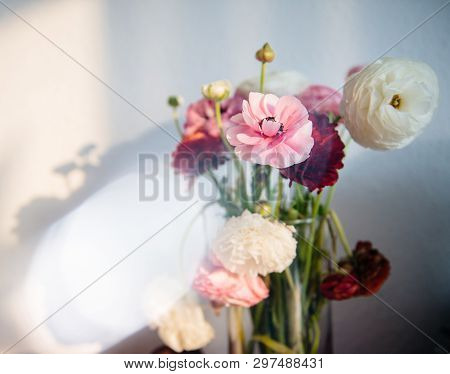 Beautiful Ranunculus Bouquet Flower In Vase Against White Wall With Shadows Of The Flower From Warm