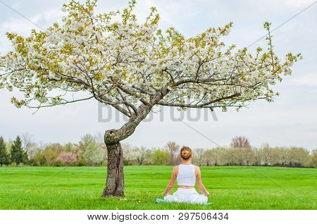 Beautiful Young Woman Is Practicing Yoga Or Meditating Sitting In Lotus Pose Near Blossom Tree At Th