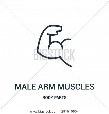 Male Arm Muscles Icon Isolated On White Background From Body Parts Collection. Male Arm Muscles Icon