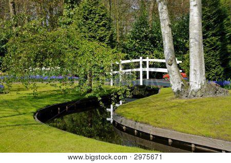 Footbridge In Spring Garden