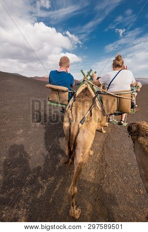 Unidentifiable Tourist Riding Camels In Volcanic Landscape In Timanfaya National Park, Lanzarote, Ca