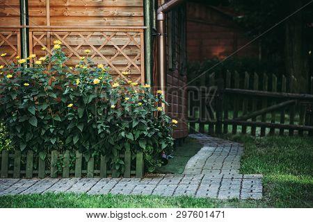 Yellow Flowers On Flowerbed In Garden. Idyllic Rural Scene.