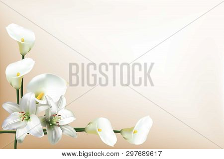 Greeting Card, Or Wedding Invitation, With Beautiful White Lilies And Calla Lilies