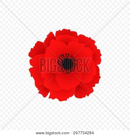 Isolated Red Poppy Icon. Simbol Of World War In Modern Style. Vector Illustration For Floral Autumn